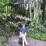  Inside Orchid Garden