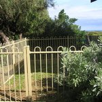 Fenced dog yards at each house
