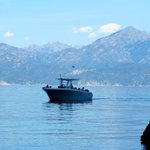 Alpana Excursions en Mer Day Tours