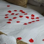Rose petals for the bride and groom