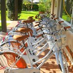  Le nuove biciclette 2013 | Albergo con uso biciclette gratuito in Versilia