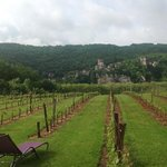 View from hotel across vineyards to St. Cirq