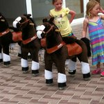 kids donkey ride comp