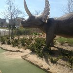  Along the crazy golf course