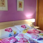 HABITACION  TWIN WITH BATHROOM PRIVATE IN THE HOSTAL LUZ MADRID