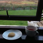  View from our room with a cup of tea and biscuit. Wonderful!