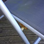 Rusting garden furniture