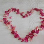 The beautiful rose petals left on our bed.