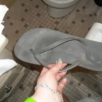 Foto de Captiva Beach Resort