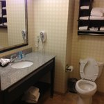 ‪Hampton Inn and Suites Detroit/Airport-Romulus‬