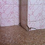 Cracked tiles along the floor