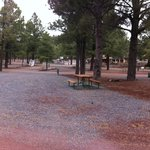 Circle Pines KOA Campground