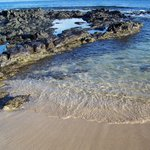  Napili Bay tide pools