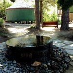 beautiful water feature, this is a coi poind with a wonderful wooden swing in background