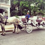  Horse and carriage ride from Kenwood Inn