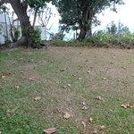 Dead grass and leaves in front of our villa