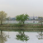 Meadowlands Conservation Trust