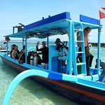 diving is also a possability on pondok bambu with bambu divers