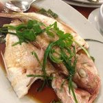 Steamed red snapper Guangdong style