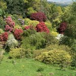 Beautiful colours at Muncaster Castle