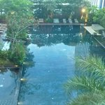 View of pool from deluxe room on Level 10