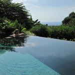 From our private infinity pool overlooking the lush jungle toward the ocean