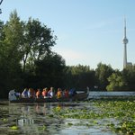 Take a beautiful canoe paddle to Toronto Islands and enjoy a gourmet picnic!