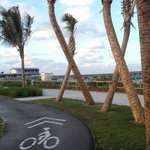 Nearby beach, pier and cycling