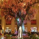 Spring at the Palazzo - entrance to casino