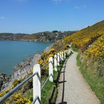 walk to Caswell Bay