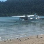 float plane happy bay