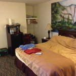  king size room, wit fridge and microwave