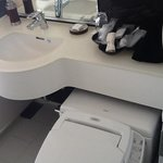sink and bidet and many tolietries