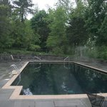 The pool surrounded by trees and wisteria on a rainy day!
