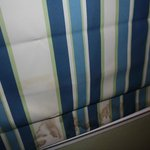 Curtain in the main bedroom