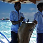 Arriving at Vilamendhoo