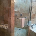 Walk in shower room 1137