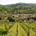 A view from the attached vineyard onto the town of Greve in Chianti