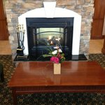 Fireplace/Flowers