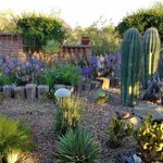 Foto di Hacienda del Desierto Bed and Breakfast