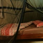 mosquito net over the bed