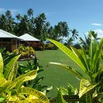 beautiful gardens at Aroha Taveuni