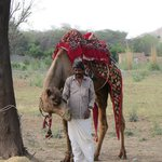 the camel you can ride & his handler