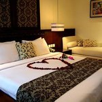 Newly Renovated Suite Room
