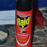Bug spray, for own battle with bugs
