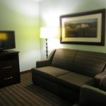 Bilde fra Holiday Inn Hotel & Suites, Williamsburg-Historic Gateway