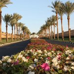 Photo of Hyatt Regency Sharm El Sheikh Resort Sharm El-Sheikh