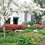 Springtime and dogwood season at Buckhorn Inn