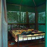 Here were our rooms, very cozy and definitely made you feel comfortable and in the thick of natu