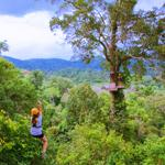 Flight of the Gibbon - Treetop Adventure